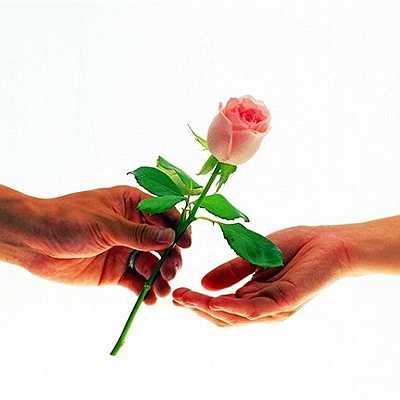 Букет к 8 марта: признание на языке цветов