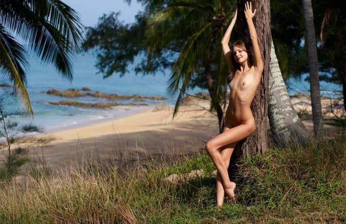 В тропиках эротика