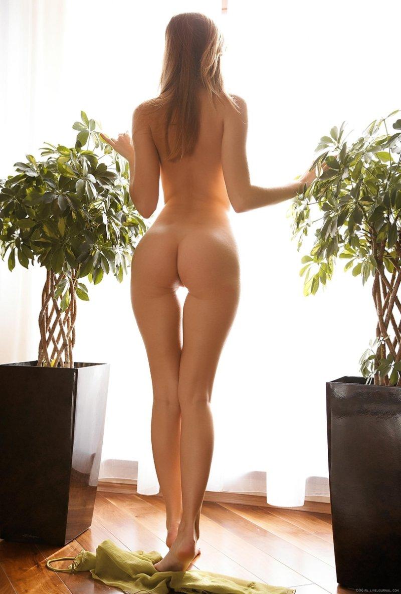 картинки молодыми голые попы стройные девушки фото дама всегда